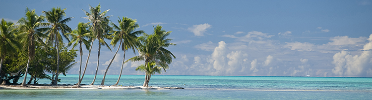Vahine_Island__Private_Island_Resort15.jpg