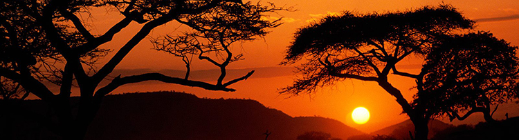 1380317468-serengeti-national-park-sunset-tanzania.jpg